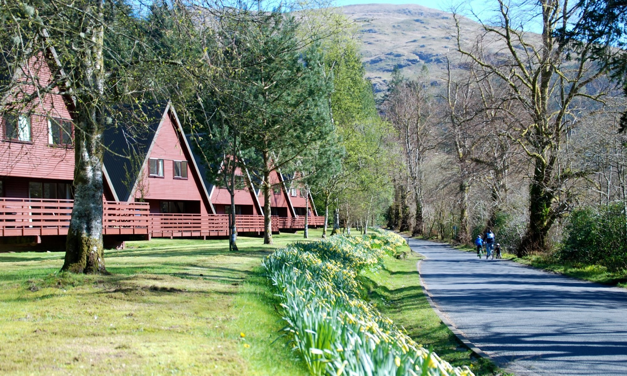 Excellent choice of Lochgoilhead lodges