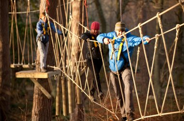 TreeZone - Family Fun in Argyll
