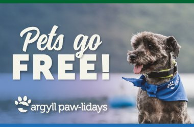 Pet Friendly Pawlidays🐶